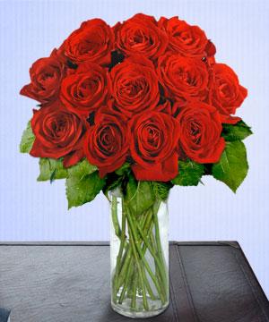 Anneme 12 adet cam içerisinde kirmizi gül  Nevşehir çiçek gönderme sitemiz güvenlidir