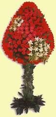 Nevşehir çiçek mağazası , çiçekçi adresleri  dügün açilis çiçekleri  Nevşehir internetten çiçek siparişi