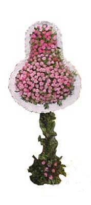Nevşehir online çiçekçi , çiçek siparişi  dügün açilis çiçekleri  Nevşehir çiçekçi telefonları