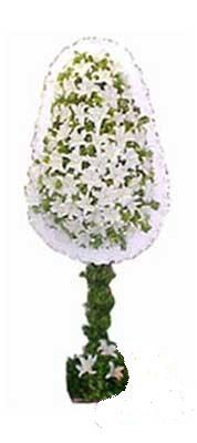Nevşehir çiçek gönderme sitemiz güvenlidir  nikah , dügün , açilis çiçek modeli  Nevşehir çiçek , çiçekçi , çiçekçilik