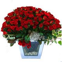 Nevşehir çiçek gönderme   101 adet kirmizi gül aranjmani