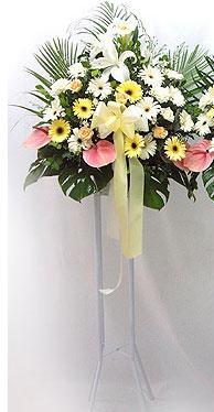 Nevşehir çiçek , çiçekçi , çiçekçilik   perförje çiçegi dügün çiçekleri