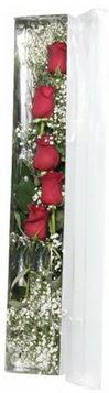 Nevşehir çiçek gönderme sitemiz güvenlidir   5 adet gülden kutu güller