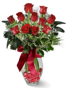 9 adet gül  Nevşehir çiçek yolla  kirmizi gül