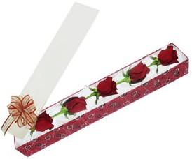 Nevşehir çiçek yolla  kutu içerisinde 5 adet kirmizi gül
