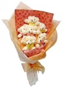 12 adet ayiciktan buket  Nevşehir çiçek gönderme sitemiz güvenlidir