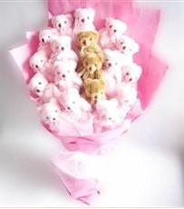 17 adet pelus ayicik buketi  Nevşehir hediye sevgilime hediye çiçek