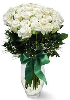 19 adet essiz kalitede beyaz gül  Nevşehir çiçek gönderme