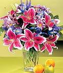 Nevşehir online çiçek gönderme sipariş  Sevgi bahçesi Özel  bir tercih