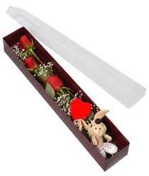 kutu içerisinde 3 adet gül ve oyuncak  Nevşehir hediye çiçek yolla