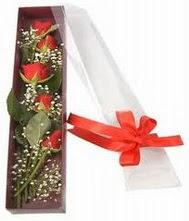 kutu içinde 5 adet kirmizi gül  Nevşehir çiçekçi telefonları