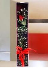 kutu içinde tek kirmizi gül  Nevşehir internetten çiçek siparişi
