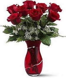 Vazo içinde 8 adet kirmizilar içinde güller  Nevşehir çiçekçi telefonları