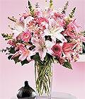 Nevşehir anneler günü çiçek yolla  Kazablanka biçme vazoda