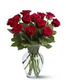 Nevşehir çiçek online çiçek siparişi  cam yada mika vazoda 10 kirmizi gül