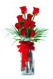 Nevşehir kaliteli taze ve ucuz çiçekler  9 adet mika yada cam vazoda gül tanzimi