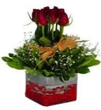 Nevşehir çiçek mağazası , çiçekçi adresleri  7 adet mika yada cam vazoda gül tanzimi