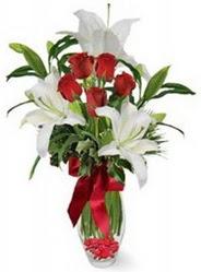 Nevşehir çiçek satışı  5 adet kirmizi gül ve 3 kandil kazablanka