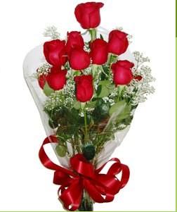 Nevşehir çiçekçi mağazası  10 adet kırmızı gülden görsel buket