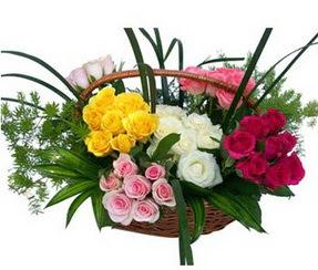 Nevşehir online çiçekçi , çiçek siparişi  35 adet rengarenk güllerden sepet tanzimi