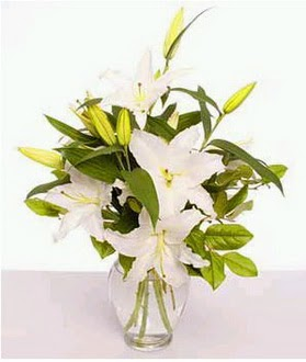 Nevşehir çiçek mağazası , çiçekçi adresleri  2 dal cazablanca vazo çiçeği