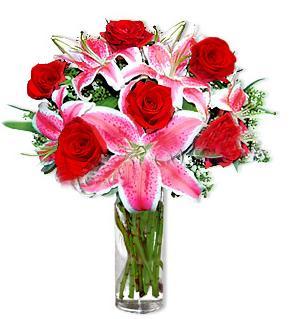 Nevşehir çiçek servisi , çiçekçi adresleri  1 dal cazablanca ve 6 kırmızı gül çiçeği