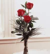 Nevşehir çiçek yolla  Vazoda 3 adet güzel gül