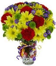 En güzel hediye karışık mevsim çiçeği  Nevşehir çiçek yolla , çiçek gönder , çiçekçi
