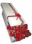 Nevşehir kaliteli taze ve ucuz çiçekler  11 adet 1.kalite magnum güller