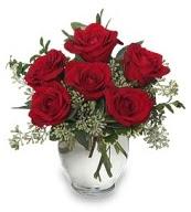 Vazo içerisinde 5 adet kırmızı gül  Nevşehir İnternetten çiçek siparişi