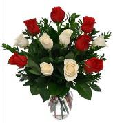 Vazo içerisinde 6 kırmızı 6 beyaz gül  Nevşehir çiçek yolla , çiçek gönder , çiçekçi