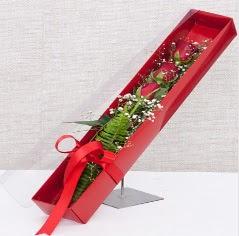Kutu içerisinde 3 adet kırmızı gül  Nevşehir çiçek , çiçekçi , çiçekçilik