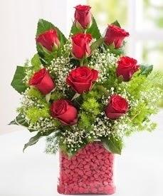 Cam içerisinde 9 adet kırmızı gül  Nevşehir çiçek yolla
