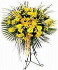 Nevşehir uluslararası çiçek gönderme  Sari kazablanka Ferforje