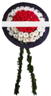 mozele çiçeği  Nevşehir çiçekçiler
