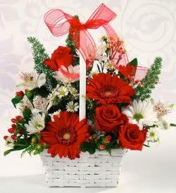 Karışık rengarenk mevsim çiçek sepeti  Nevşehir çiçekçi telefonları