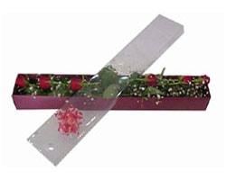 Nevşehir internetten çiçek satışı   6 adet kirmizi gül kutu içinde