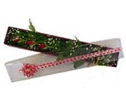 Nevşehir çiçek yolla , çiçek gönder , çiçekçi   3 adet gül.kutu yaldizlidir.