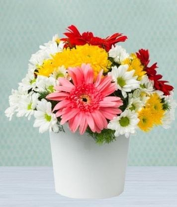 Seramik Vazoda Gelbera ve Papatya  Nevşehir çiçek mağazası , çiçekçi adresleri