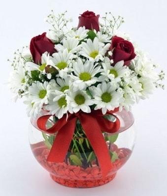Fanusta 3 Gül ve Papatya  Nevşehir çiçek yolla