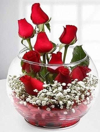 Kırmızı Mutluluk fanusta 9 kırmızı gül  Nevşehir çiçek gönderme sitemiz güvenlidir