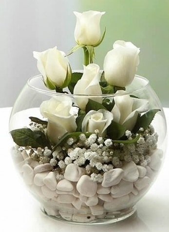 Beyaz Mutluluk 9 beyaz gül fanusta  Nevşehir çiçek gönderme sitemiz güvenlidir