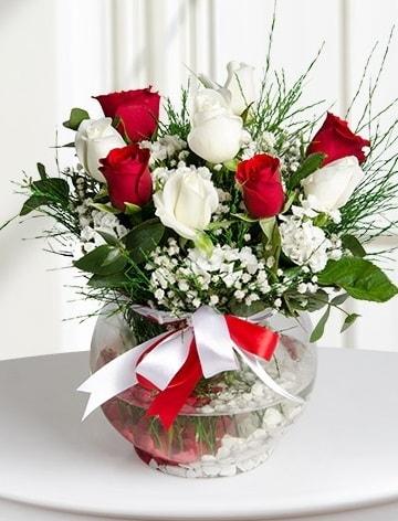 Aşk Küresi  5 beyaz 5 kırmızı gül fanusta  Nevşehir çiçek yolla