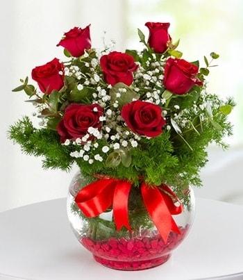 fanus Vazoda 7 Gül  Nevşehir yurtiçi ve yurtdışı çiçek siparişi
