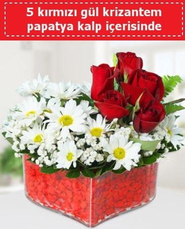 mika kalp içerisinde 5 kırmızı gül papatya  Nevşehir çiçek mağazası , çiçekçi adresleri