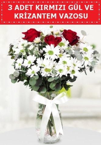 3 kırmızı gül ve camda krizantem çiçekleri  Nevşehir çiçek mağazası , çiçekçi adresleri