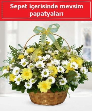 Sepet içerisinde mevsim papatyaları  Nevşehir online çiçekçi , çiçek siparişi