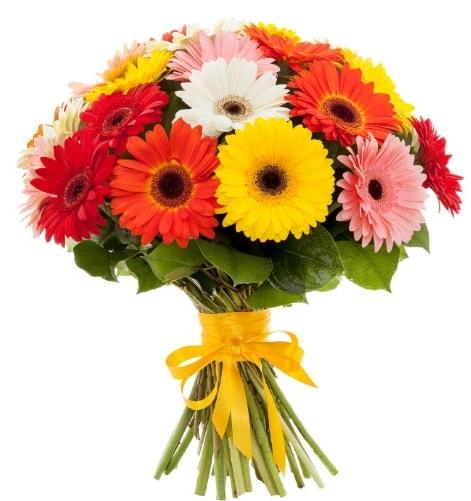 Gerbera demeti buketi  Nevşehir güvenli kaliteli hızlı çiçek